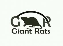 Giant Rats - Njalo Nje (feat. Sabrina)