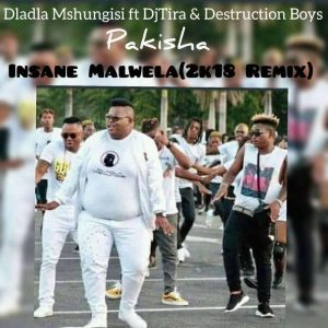 Dladla Mshunqisi feat. Dj Tira & Distruction Boyz - Pakisha (Insane Malwela 2k18 Remix)