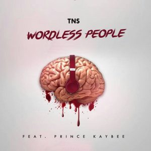TNS - Wordless People (feat. Prince Kaybee)