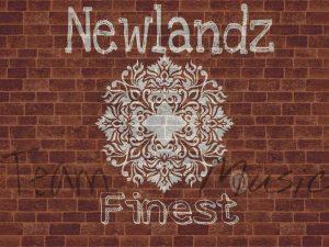 Newlandz Finest - Gqomtera 2