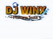 Dj Winx - The Inches of Gqom [TIOG ALBUM]