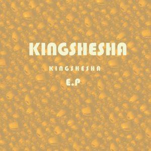 Dj Pelco & Kingshesha - Singenile Nge Gqom (feat. Terrorist)
